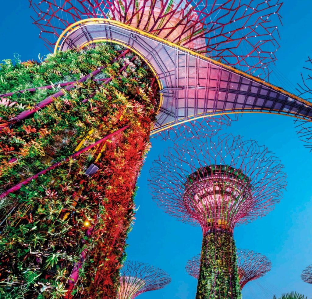 Supertrees at Garden Bay in Singapore